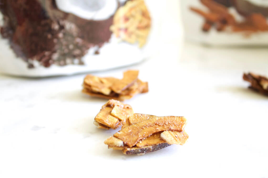Top 10 Summer Snack Ideas sarahkayhoffman.com Made in Nature Toasted Cinnamon Coconut Chips
