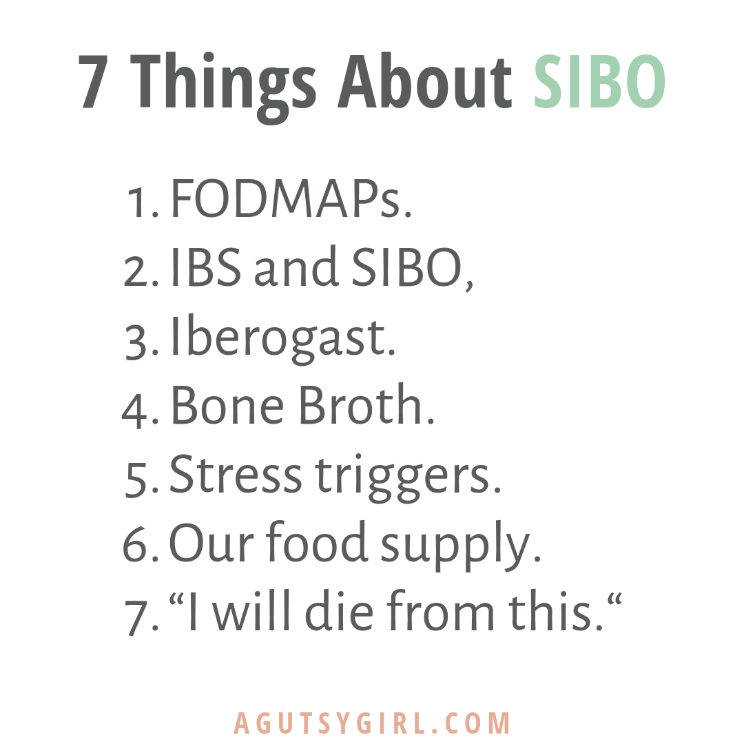 7 Things About SIBO agutsygirl.com #sibo #guthealth #healing #ibs