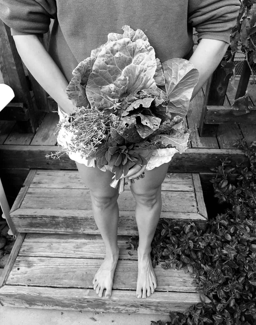 Start with Yourself sarahkayhoffman.com Organic greens gardening Virtual Book Club A Mother's Heart