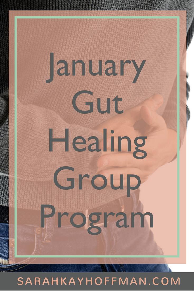 Gut Healing Group Program sarahkayhoffman.com January 2018