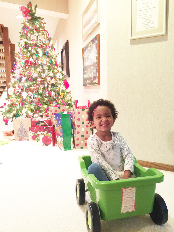 Merry Christmas sarahkayhoffman.com Samarah