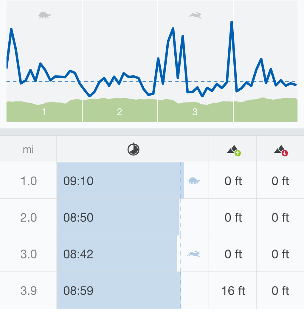 Mile One sarahkayhoffman.com Running Splits