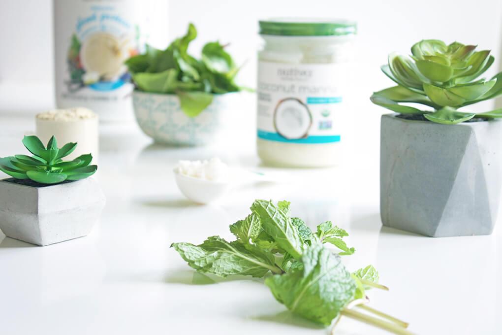 Vanilla Mint Shamrock Protein Shake sarahayhoffman.com Mint Paleo