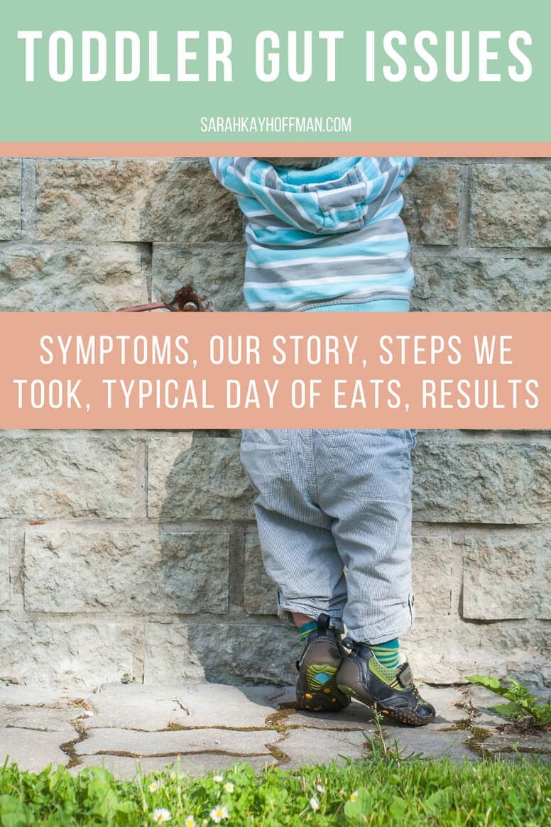 Toddler Gut Issues sarahkayhoffman.com symptoms, our story, steps we took, typical day of eats, results