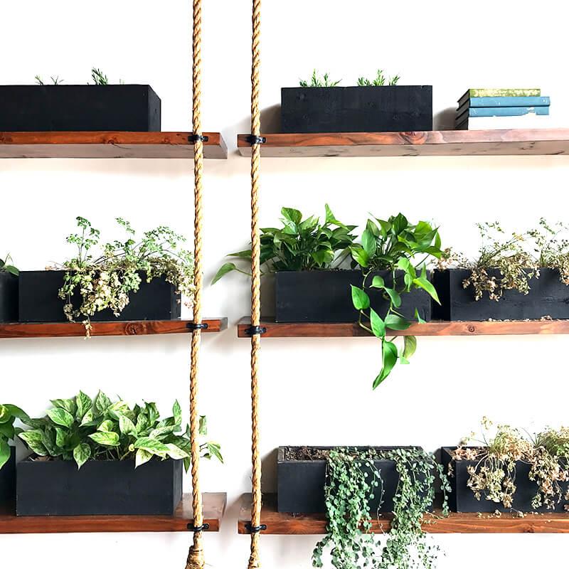 February Catch Up Over Bone Broth www.sarahkayhoffman.com plants nature floating shelves