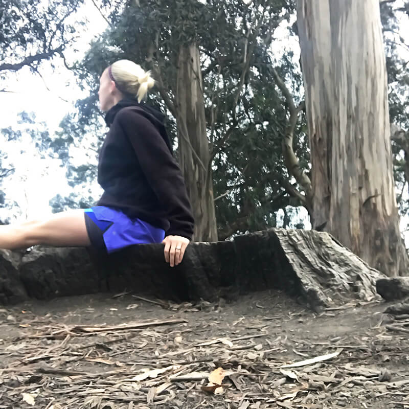 The Day I Left California www.sarahkayhoffman.com trees mountains