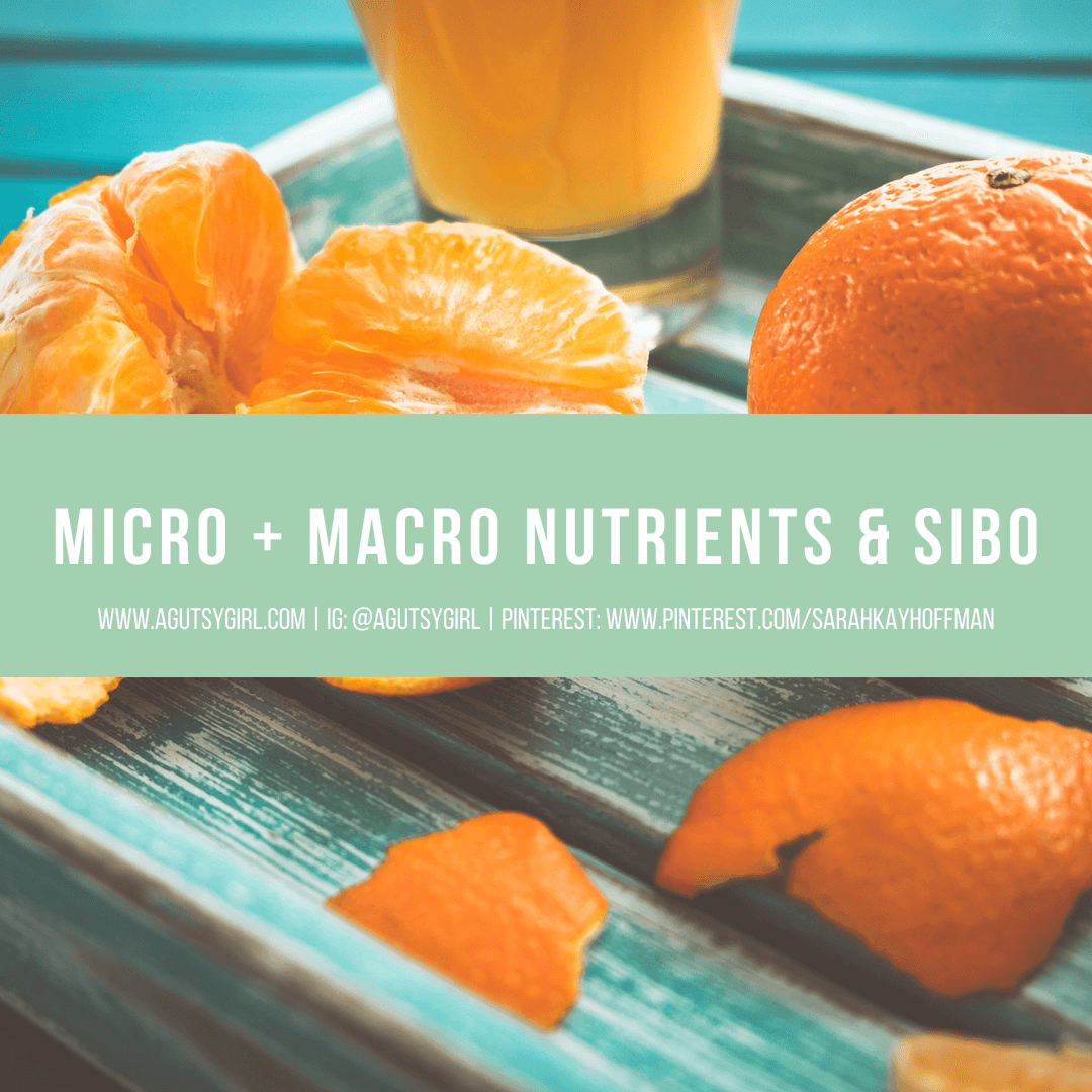 Micronutrients and Macronutrients with SIBO www.sarahkayhoffman.com #guthealth #macronutrients #SIBO #healthylifestyle