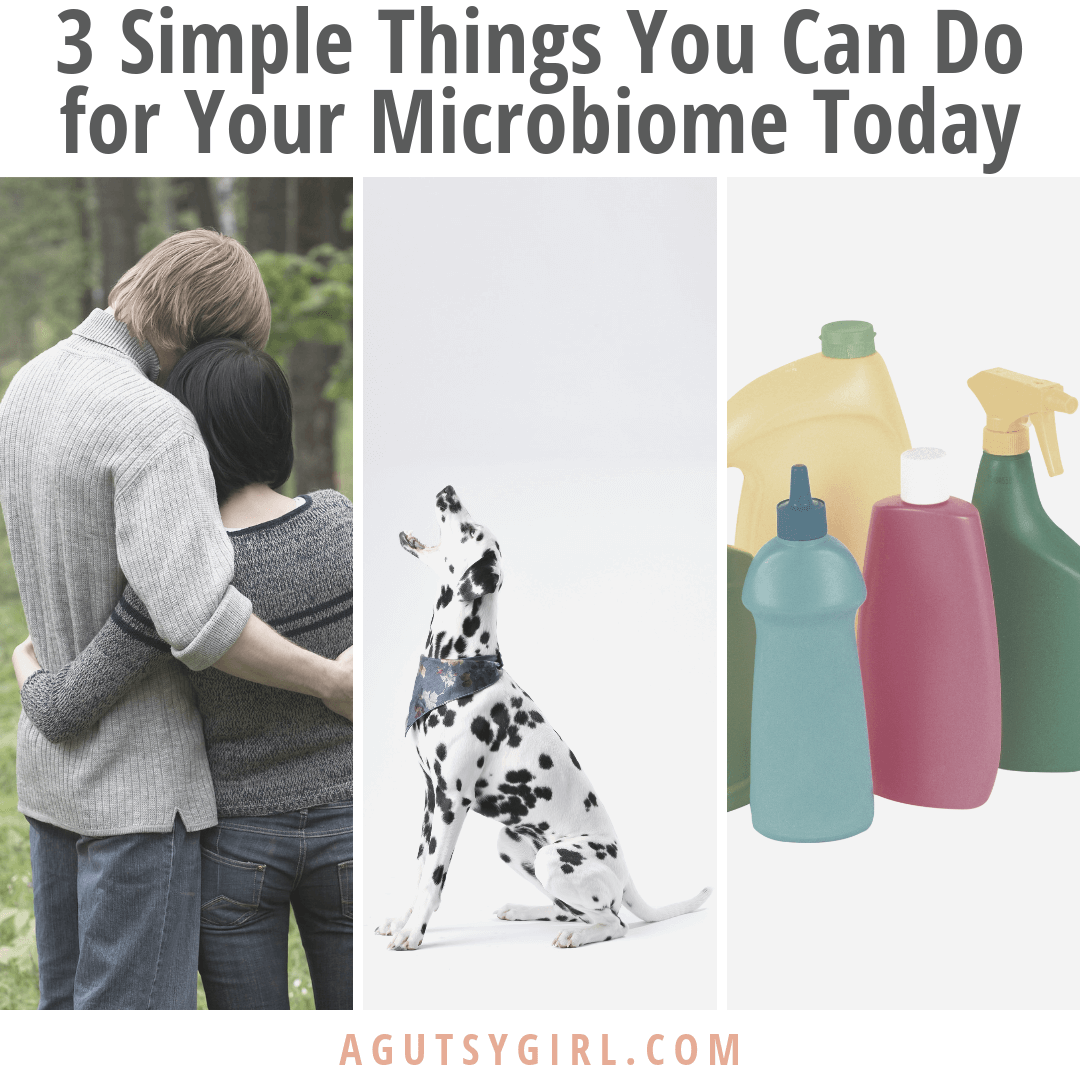 3 Simple Things You Can Do for Your Microbiome Today agutsygirl.com #microbiome #guthealing #guthealth