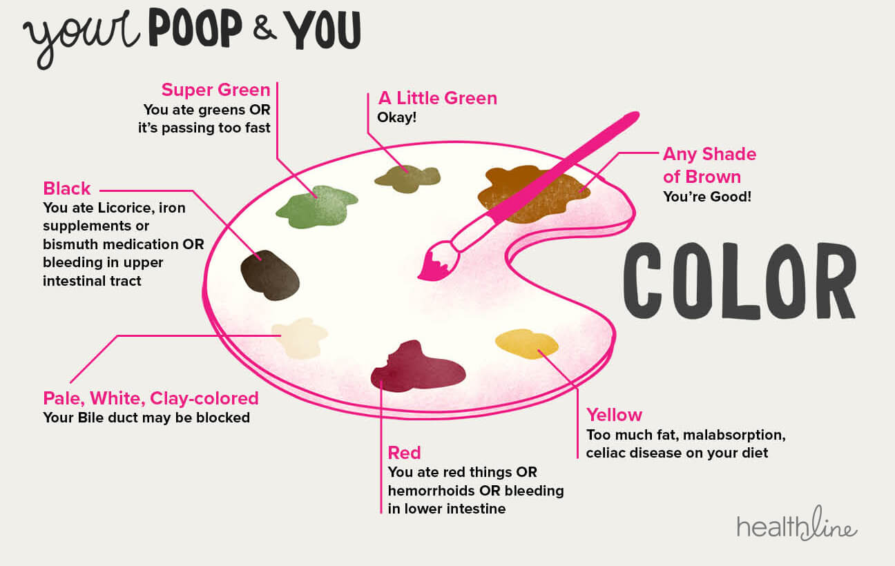 3 Simple Ways to Visually Track Your Gut Health agutsygirl.com #ibd #guthealth #ibs #SIBO poop color