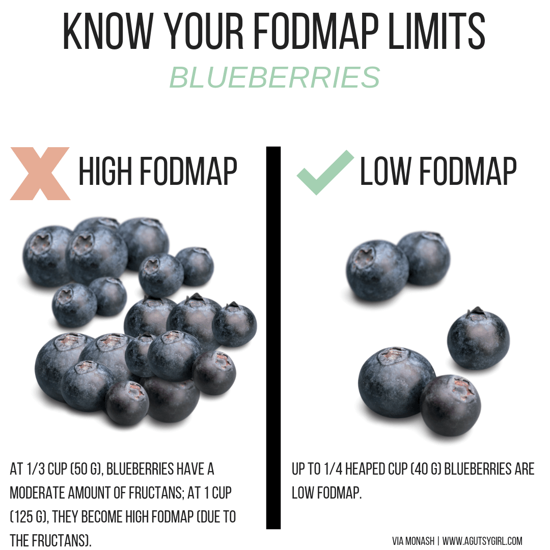 Blueberries blueberry Reasonable SIBO E-Book agutsygirl.com low fodmap sibo #sibo #lowfodmap #fodmap #guthealth