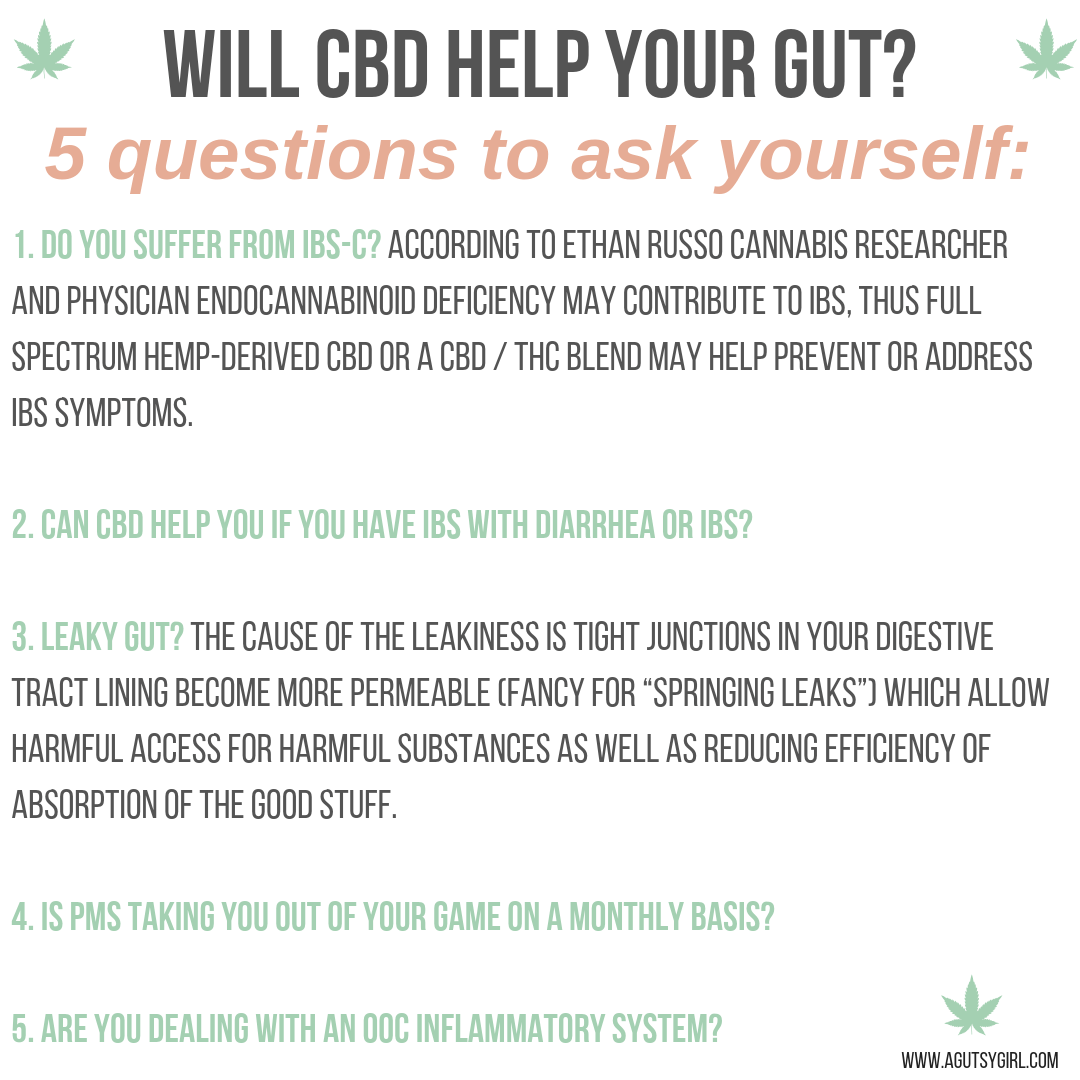 CBD for Digestion questions to ask agutsygirl.com A Gutsy Girl #guthealth #cbd #hempoil #ibs