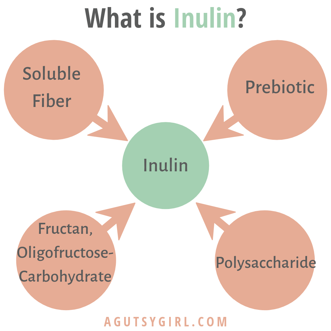 What is Inulin agutsygirl.com A Gutsy Girl #inulin #prebiotic #fiber #guthealth