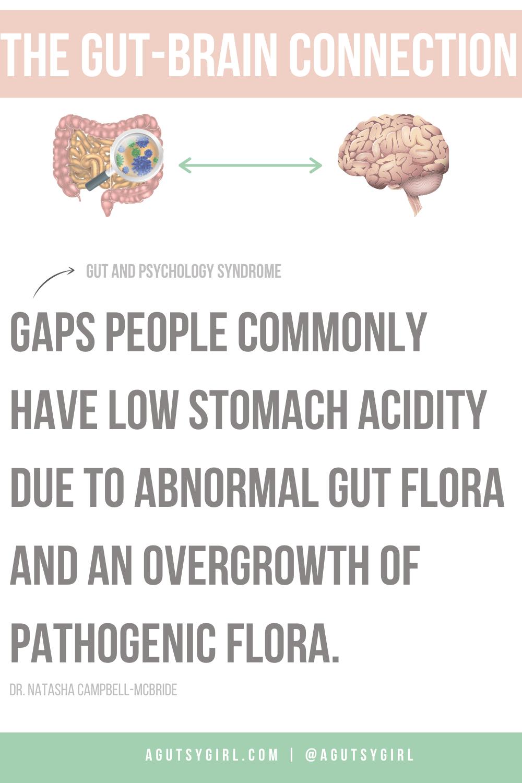 The Gut-Brain Connection GAPS stomach acid agutsygirl.com #guthealth #gaps #stomachacid #gutbrain