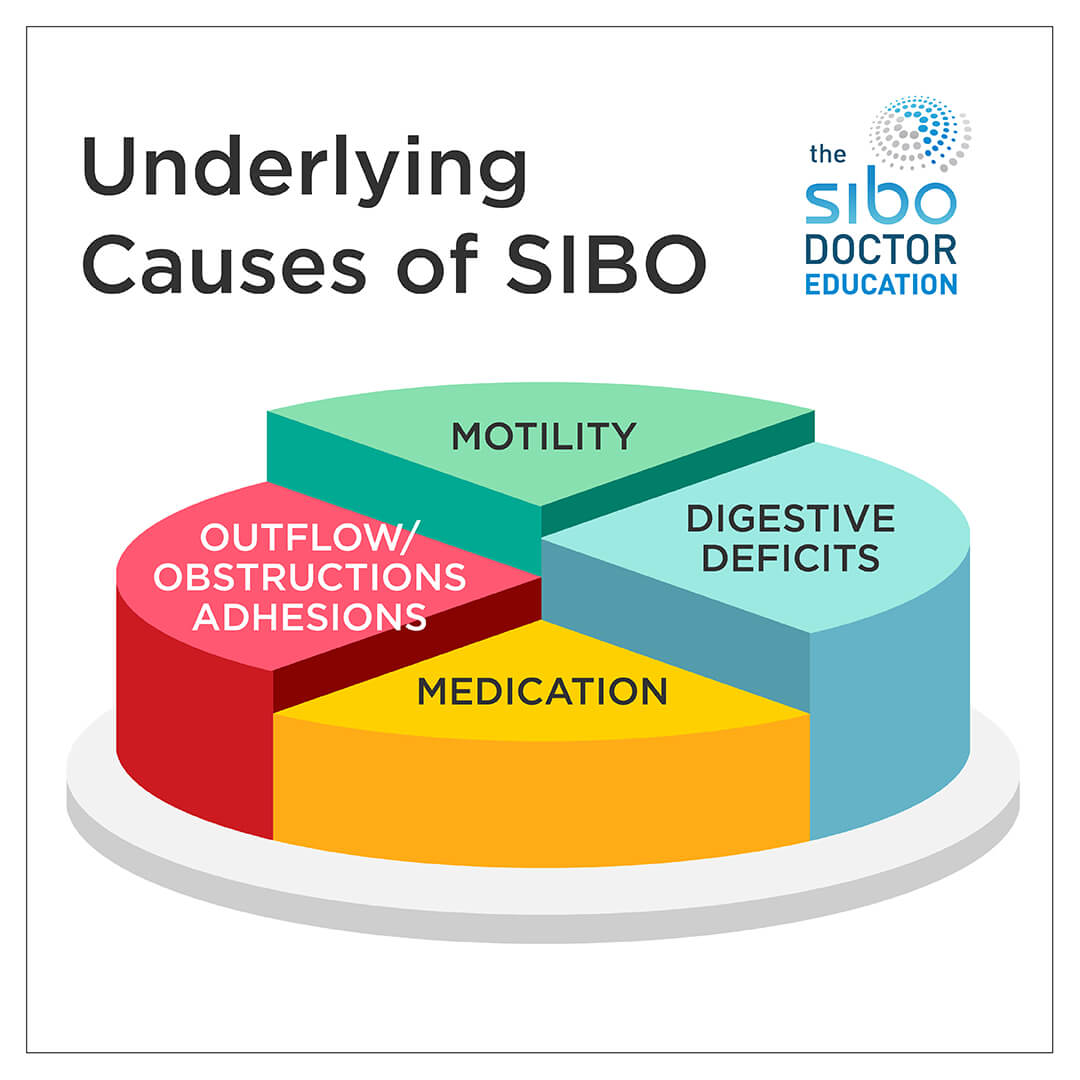 What Caused Your SIBO with Dr. Nirala Jacobi via A Gutsy Girl agutsygirl.com #SIBO #guthealth #ibs underlying causes