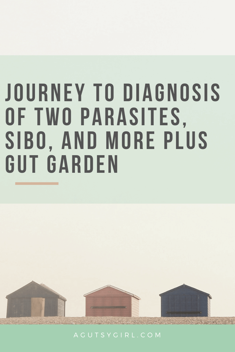 Journey to Diagnosis of Two Parasites, SIBO, and More Plus Gut Garden agutsygirl.com Lily story founder #entrepreneur #guthealth #sibo #parasites #suppplements