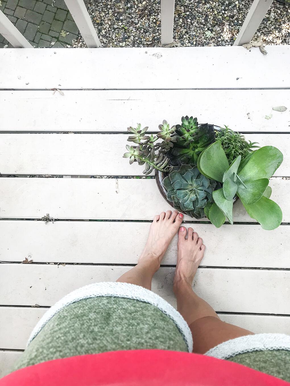 Self Care During Massive Grief agutsygirl.com #grief #selfcare #healthyliving succulent