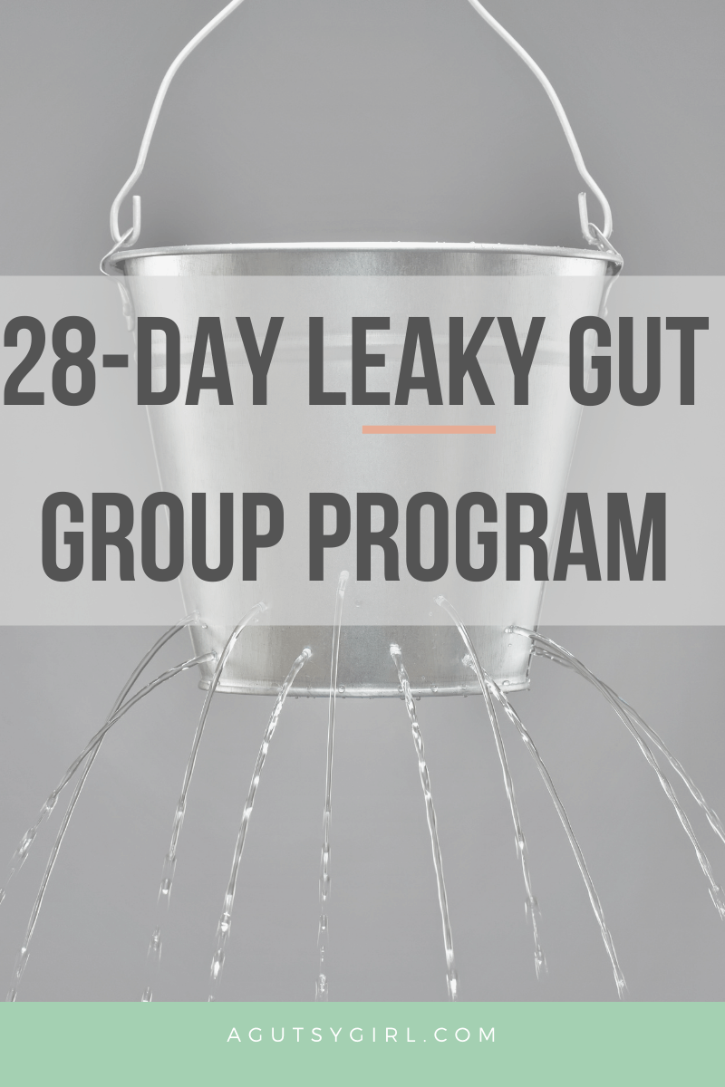 28-Day Leaky Gut Group Program agutsygirl.com #leakygut #leakygutdiet #guthealth