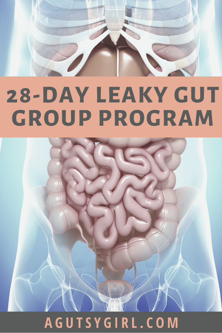28-Day Leaky Gut Group Program gut healing agutsygirl.com #guthealth #leakygut #leakygutdiet
