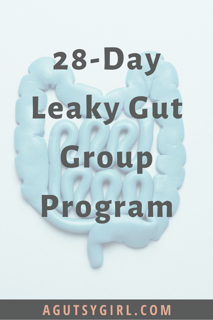 28-Day Leaky Gut Group Program gut healing agutsygirl.com #guthealth #leakygut #leakygutsyndrome