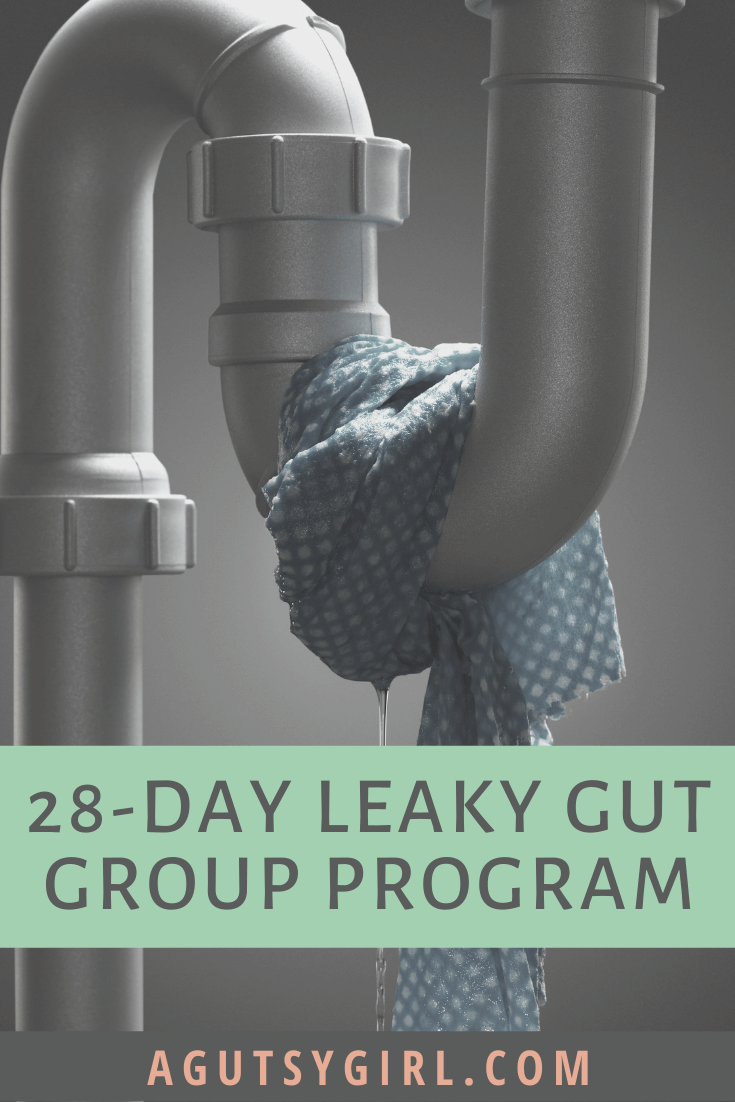 28-Day Leaky Gut Group Program gut healing agutsygirl.com #guthealth #leakygut