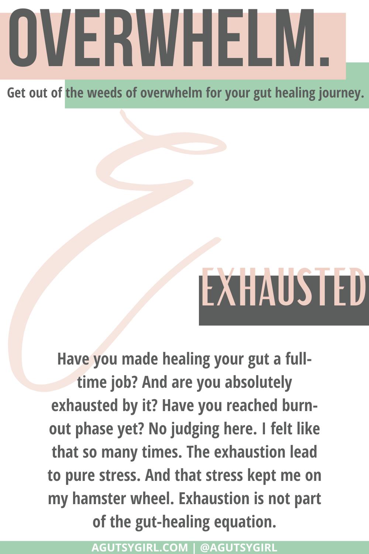 E2 Gut Healing for Dummies agutsygirl.com #guthealing #guthealth #healthjourney