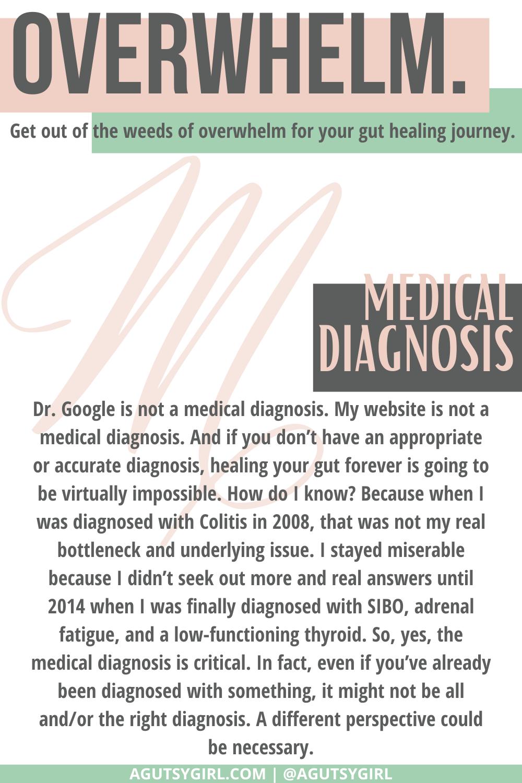 M Gut Healing for Dummies agutsygirl.com #guthealing #guthealth #healthjourney