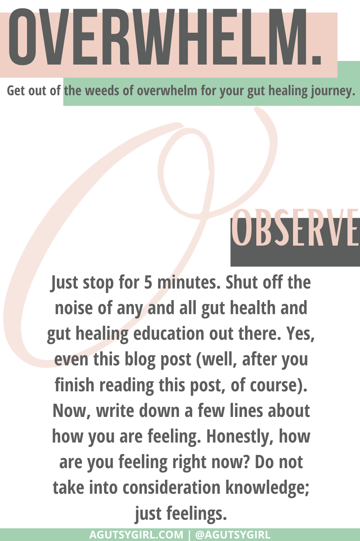 O Gut Healing for Dummies agutsygirl.com #guthealing #guthealth #healthjourney