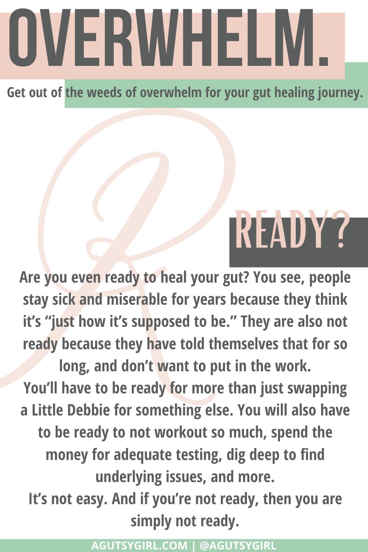 R Gut Healing for Dummies agutsygirl.com #guthealing #guthealth #healthjourney