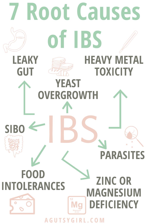 7 Root Causes of IBS agutsygirl.com #ibs #guthealth #sibo #leakygut