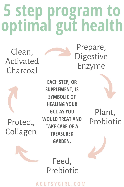 Gut Garden GoodGut Program 5 step optimal gut health agutsygirl.com #guthealth #supplements #healthyliving #gut