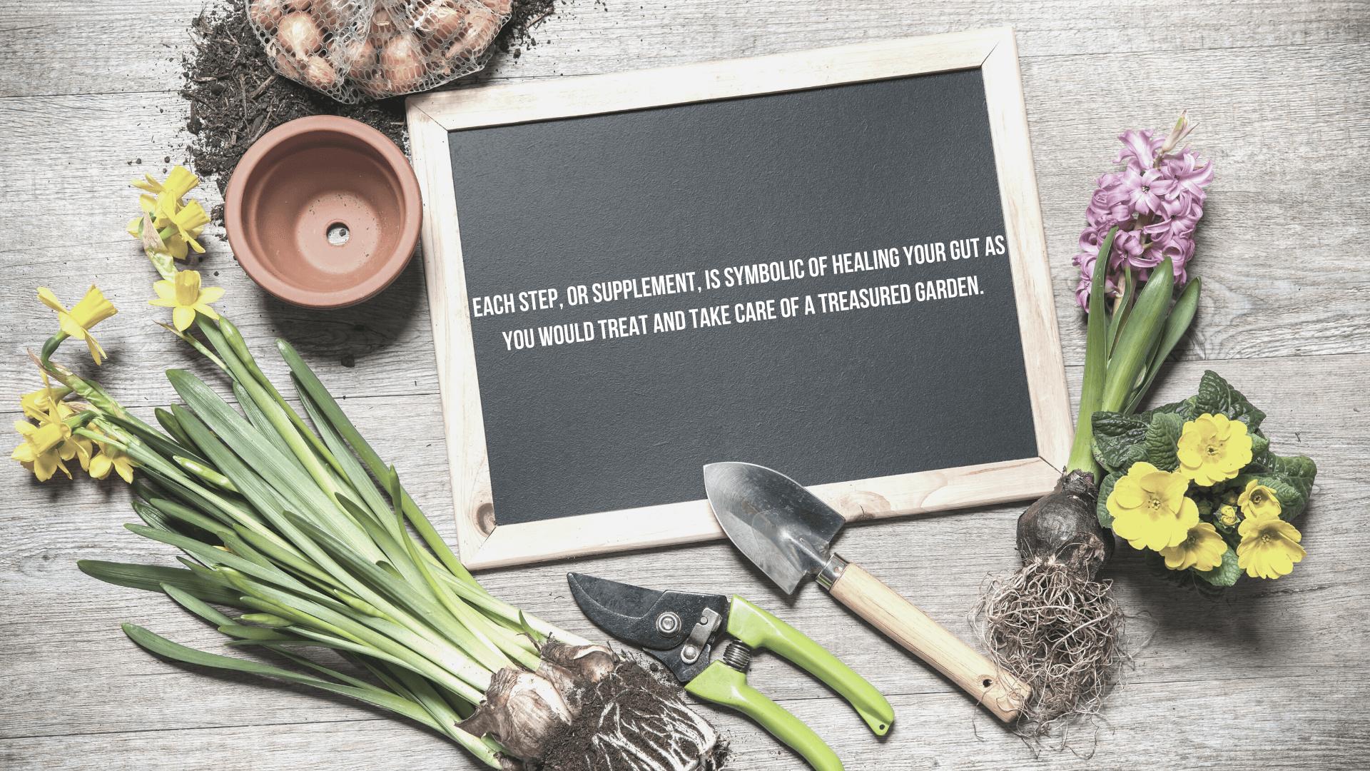 Gut Garden GoodGut Program agutsygirl.com #guthealing #guthealth #supplements 5-steps