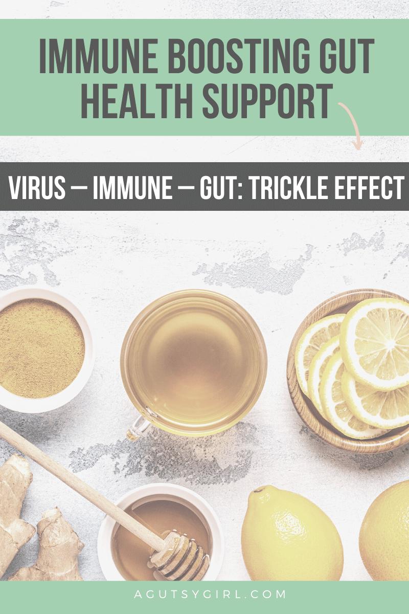 Immune Boosting Gut Health Support agutsygirl.com #guthealth #immunesystem #gut