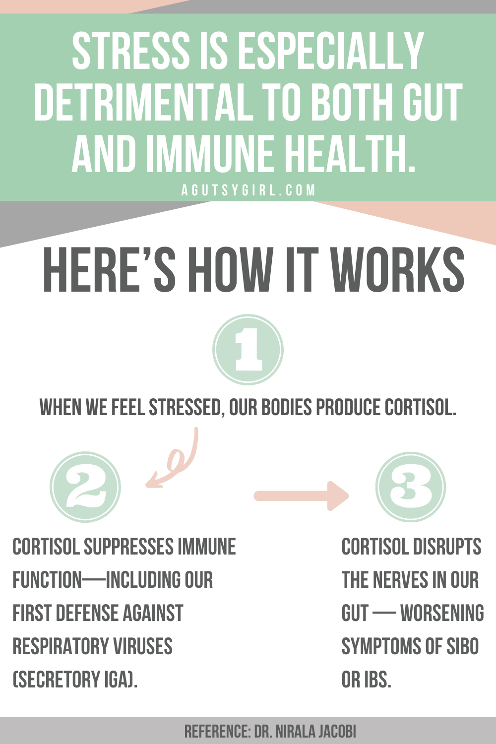 The Importance of Shifting from Stress to Happiness agutsygirl.com #guthealth #ibs #healthyliving #stress gut health immune how it works