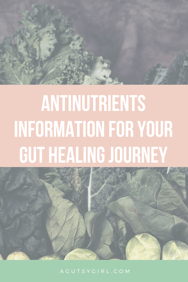 Antinutrients Information for Your Gut Healing Journey agutsygirl.com #antinutrients #guthealth #nutrition