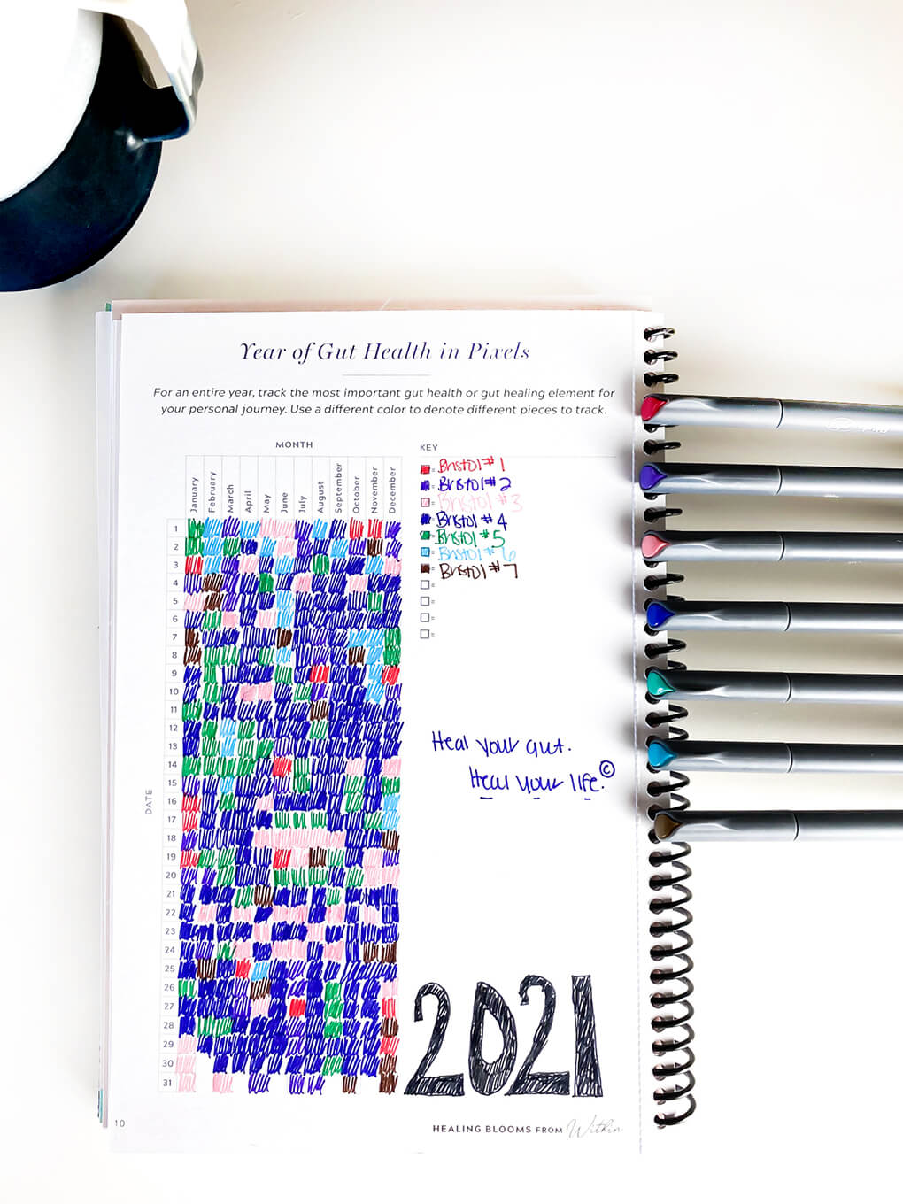 11 Yearly Gut Health Tracker Bullet Journal Ideas agutsygirl.com 90-day journal #bujo #guthealth #journaling