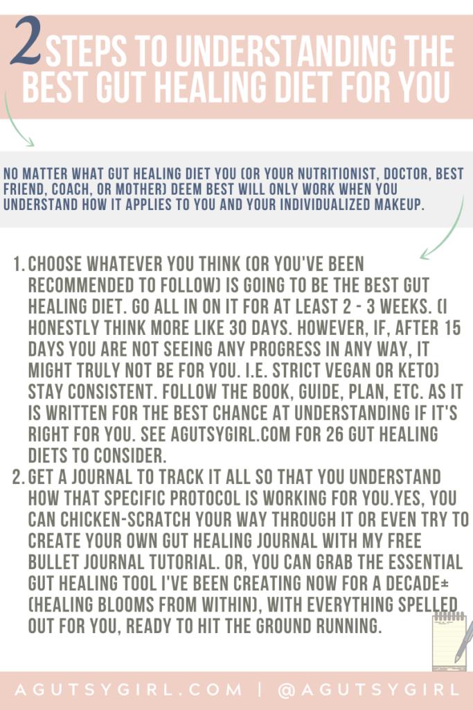 2 Steps to Understanding the Best Gut Healing Diet for You agutsygirl.com #guthealth #bestdiet #guthealing #foodjournal