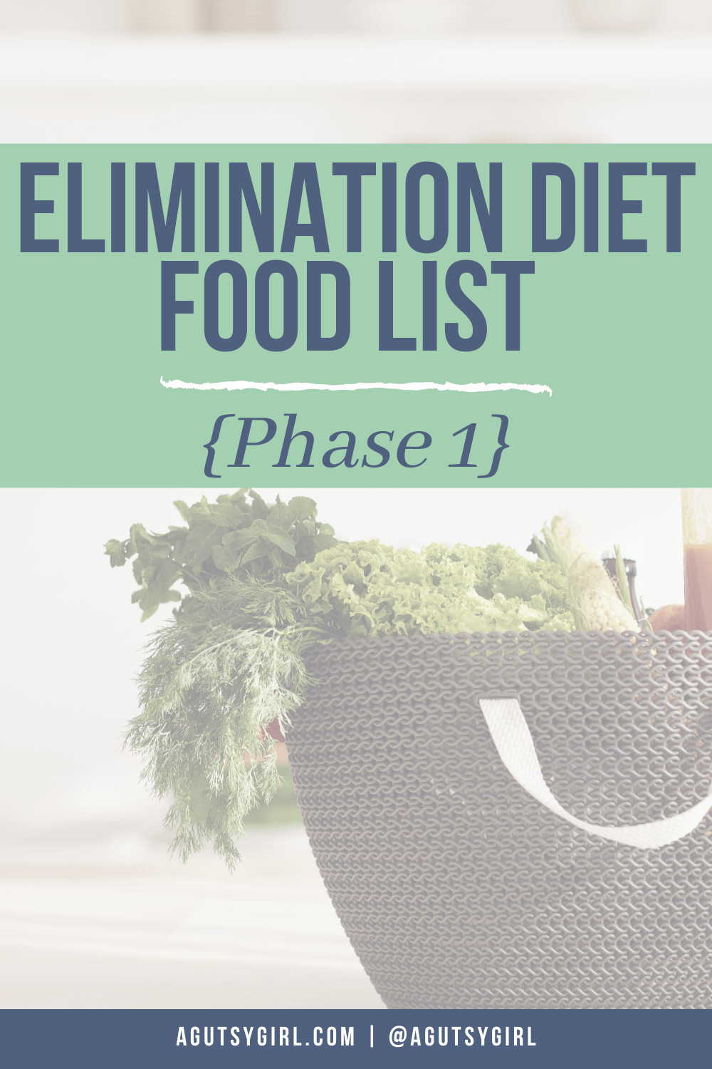 Elimination Diet Food List {Phase 1} agutsygirl.com #guthealth #eliminationdiet #foodjournal #foodjournaling #foodlist