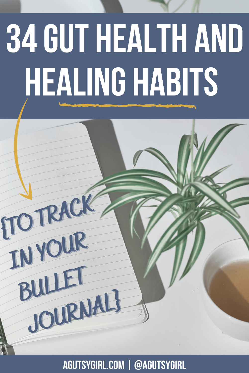 34 gut health and healing habits to track in your bullet journal agutsygirl.com #guthealing #foodjournal #eliminationdiet #healthlog