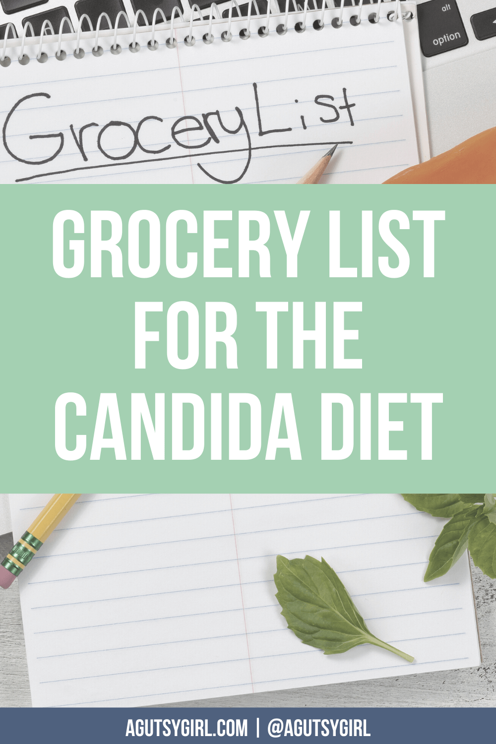 Grocery List for the Candida Diet agutsygirl.com #guthealing #candida #candidadiet