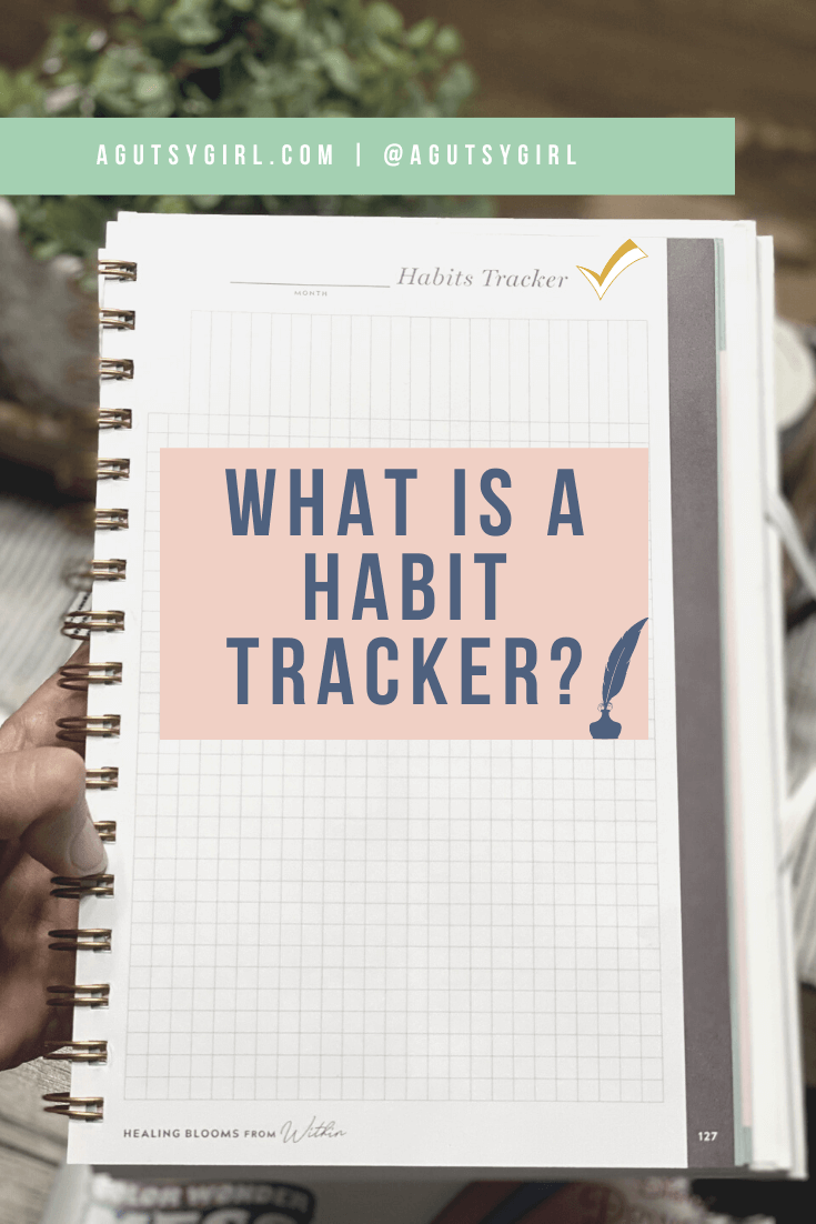 What is a Habit Tracker agutsygirl.com #guthealing #foodjournal #eliminationdiet #healthlog