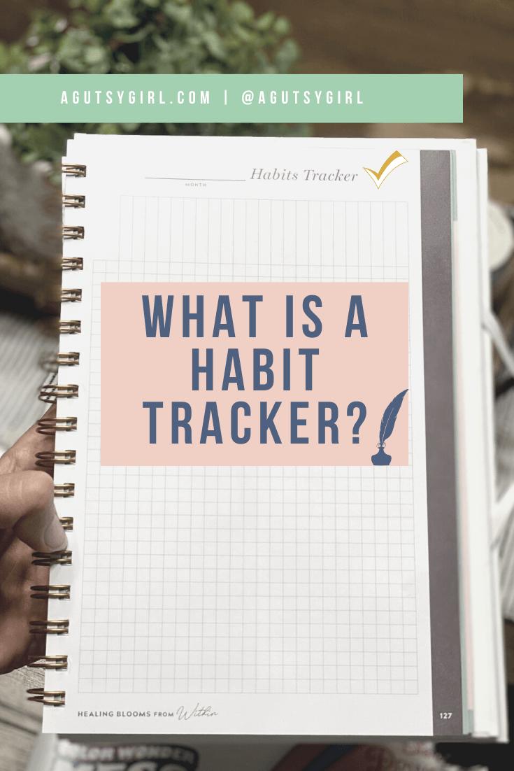 What is a Habit Tracker agutsygirl.com #guthealing #foodjournal #eliminationdiet #healthlog