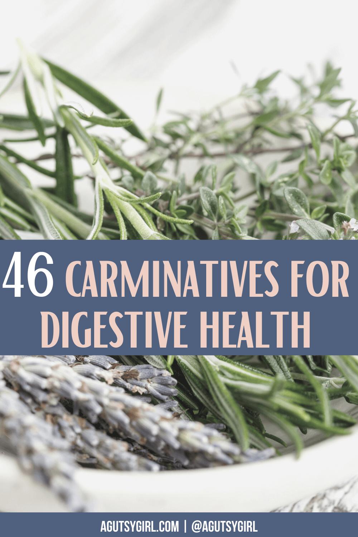 46 Carminatives for Digestive Health agutsygirl.com #herb #herbs #carminatives #digestion #guthealth