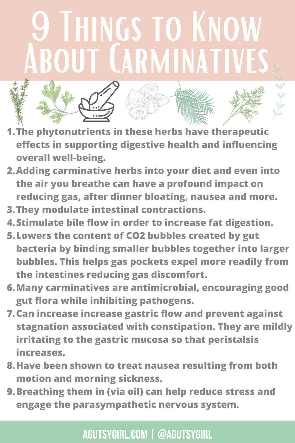 9 Things to Know About Carminatives agutsygirl.com #herbs #guthealth #digestivehealth