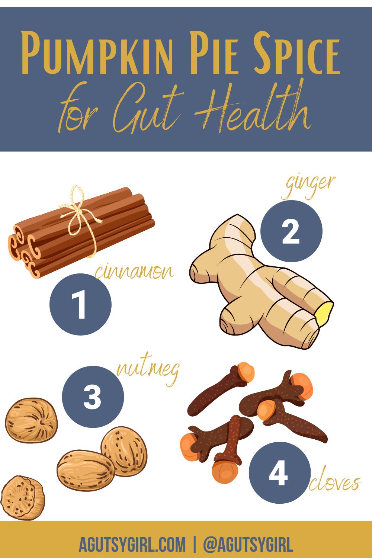 Pumpkin Pie Spice for Gut Health agutsygirl.com #pumpkinpie #pumpkinspice #guthealth #healingspices #spices
