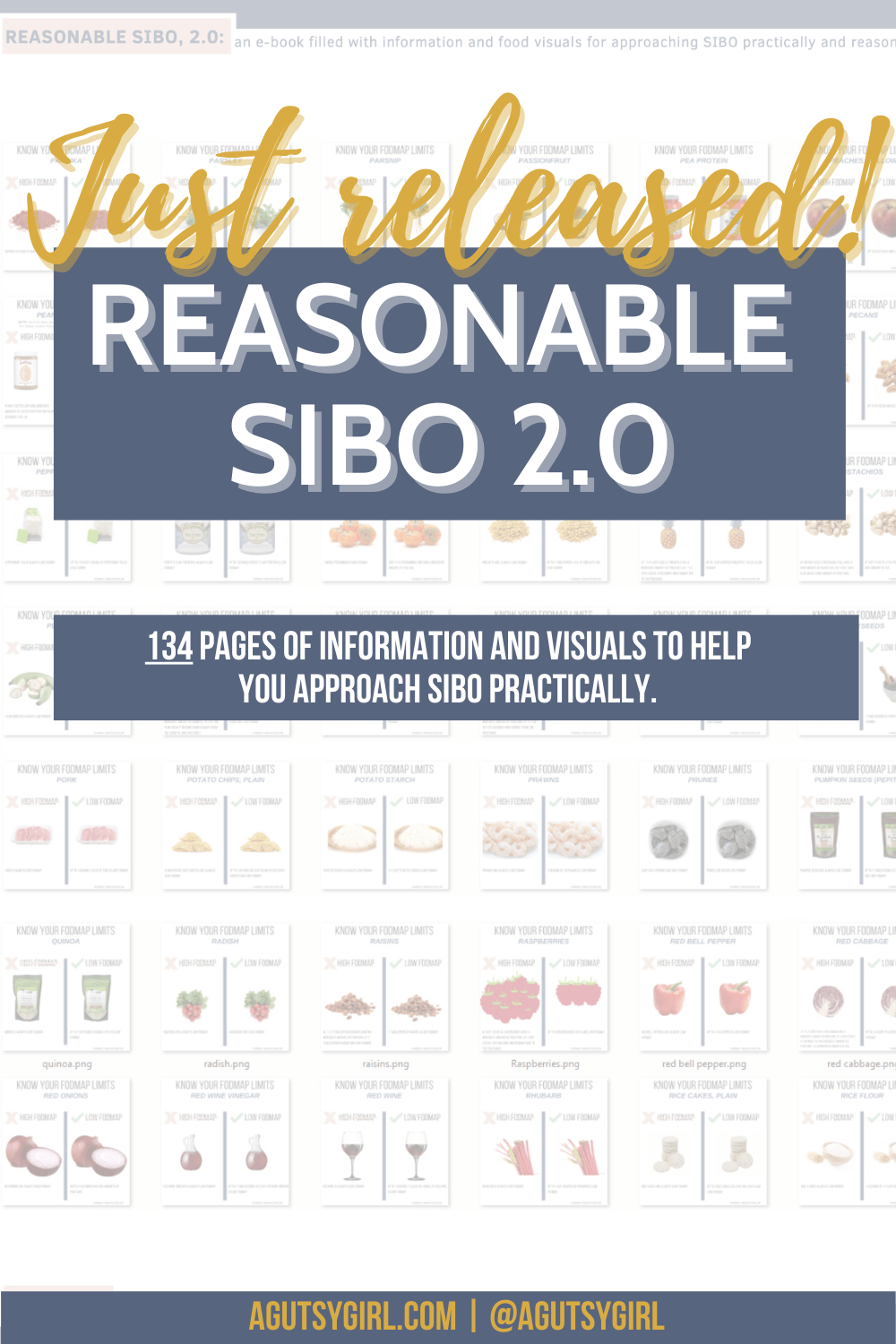 REASONABLE SIBO 2.0 with A Gutsy Girl agutsygirl.com #sibo #fodmap #guthealth #ibs