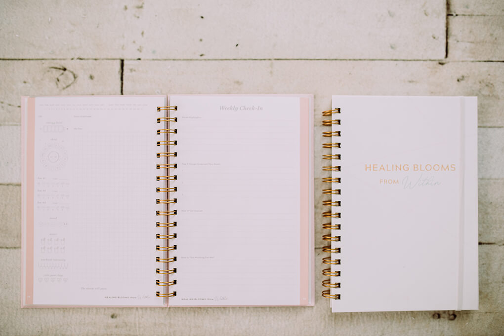 Weekly Check-in page How to conduct one using a gut healing journal agutsygirl.com #journal #journaling #newyear #guthealth