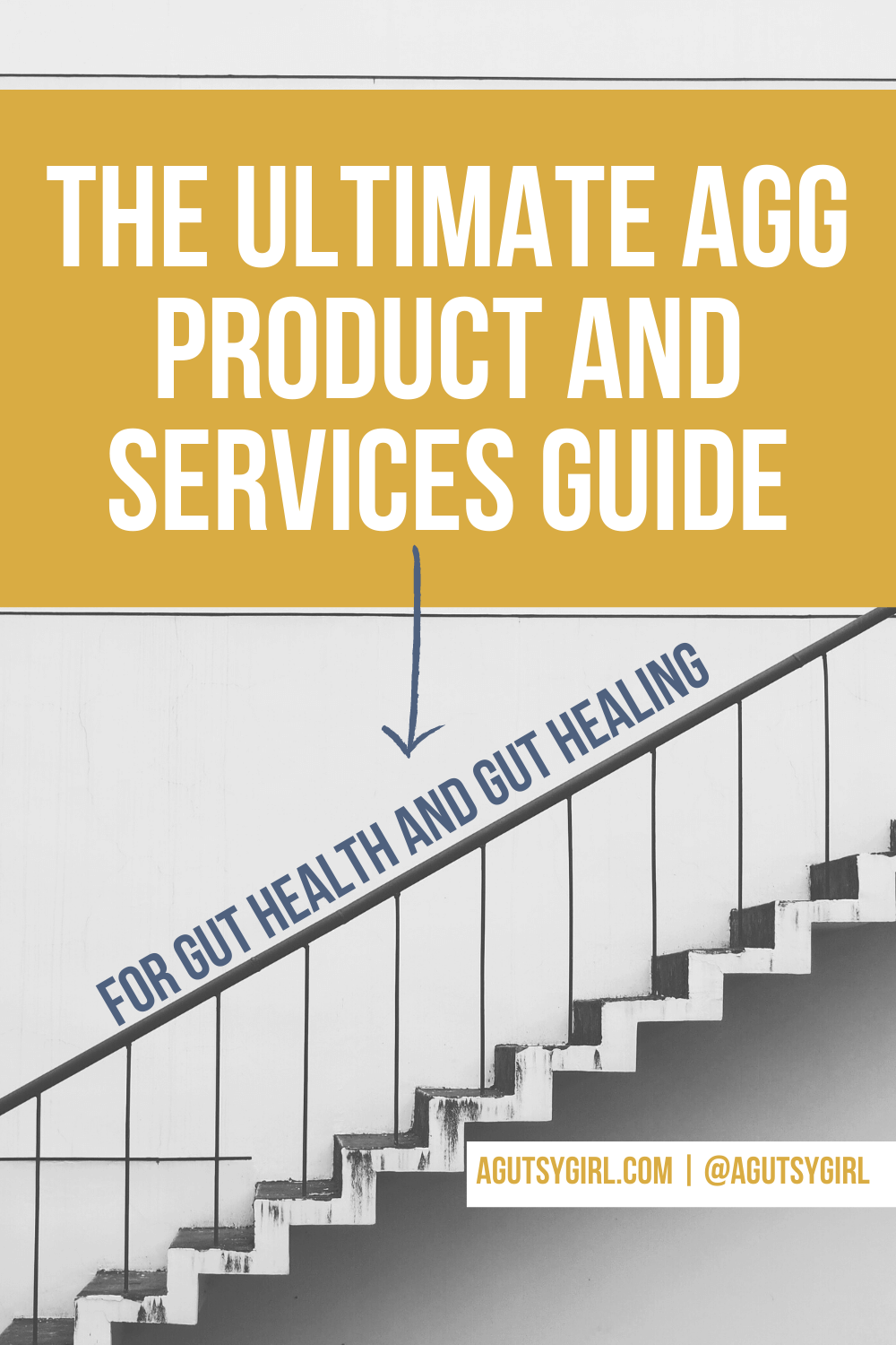 The Ultimate AGG Product and Services Guide agutsygirl.com #guthealth #healthcoaching #newyearsgoals