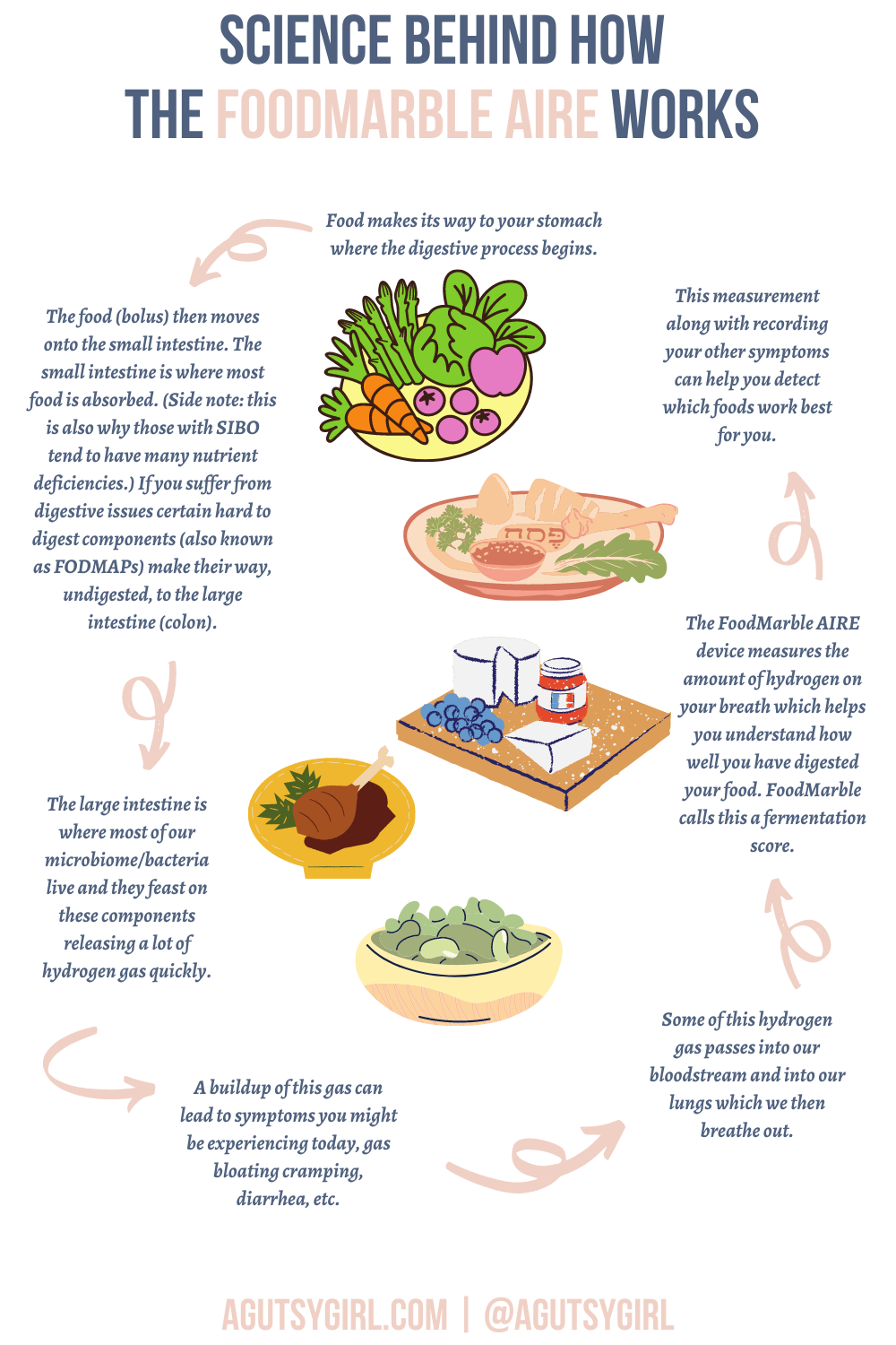 Science Behind How FoodMarble AIRE Works Hydrogen agutsygirl.com #foodmarble #healthtech #hydrogen #SIBO