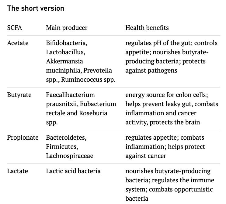 short-chain fatty acids SCFAs Atlas Bio agutsygirl.com #scfa #shortchainfattyacids #guthealth