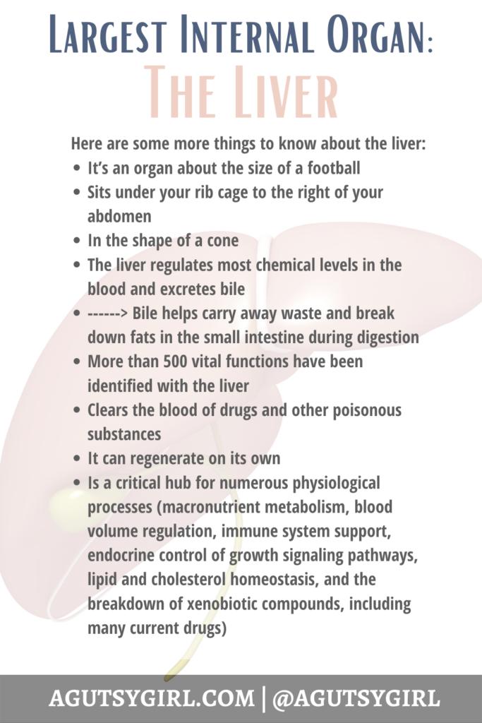 Liver Cells agutsygirl.com largest internal organ #liver #livercells